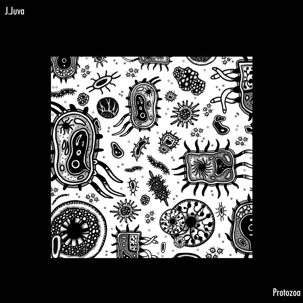 jjuva-protozoa-final