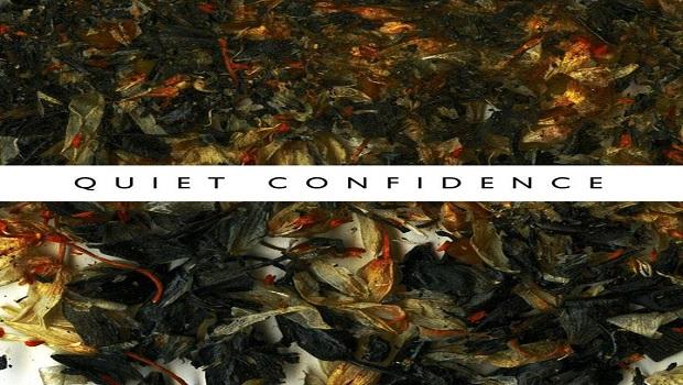 ninetails-quietconfidenceartwork