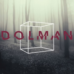 DOLMAN-12_Inch_Vinyl_Outer_Sleeve_5_mm_Spine