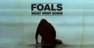 cd_review_what_went_down_55ebfdf9ac