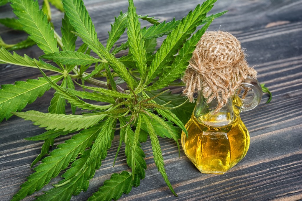 Cannabis leaves and oil in glass bottle on wooden background